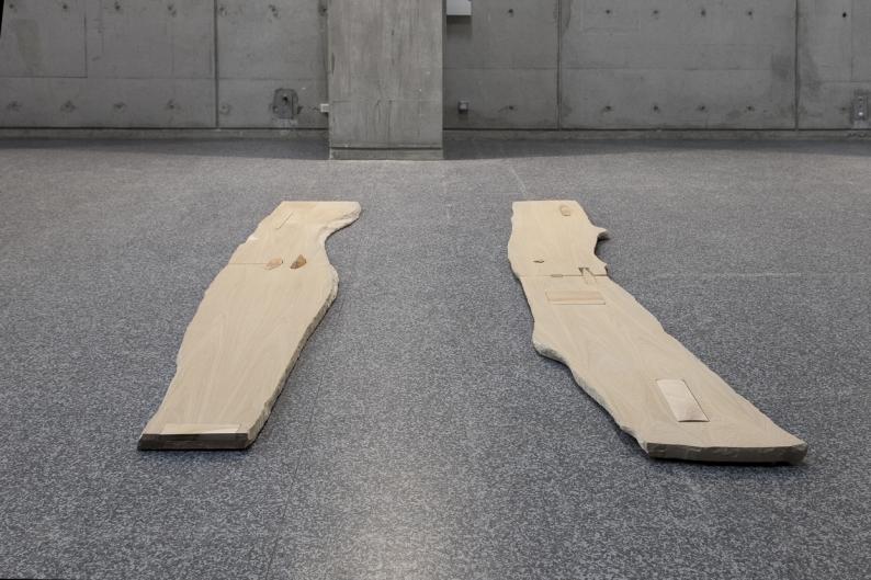 vue de l'exposition Sticks and stones de Lucy Skaer, centre d'art La Salle de bains hors les murs au musée gallo-romain de Lyon, 2015 © photographe : Aurélie Pétrel. Courtoisie du centre d'art